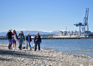 INDIAN ISLAND, Wash. (May 4, 2013) - Navy personnel teamed-up with more than 40 members of the Jefferson and Kitsap County Beachwatchers to pick up trash along NAVMAG Indian Island beaches and learn about the base's pristine shoreline ecology May 4 in honor of Earth Day. In the background is USNS Bridge (T-AOE-10) at the base ammunition pier. (U.S. Navy photo by Liane Nakahara/Released)