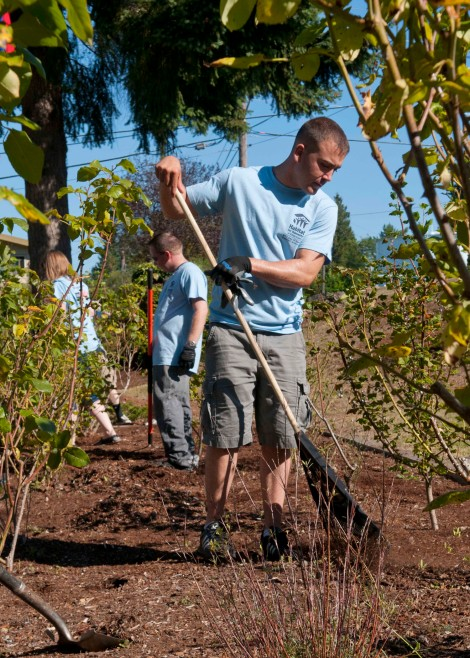 BREMERTON, Wash. (Sept. 11, 2013) Marine Cpl. Daniel Solomon, assigned to Marine Corps Security Forces Battalion (MCSFBn) on Naval Base Kitsap Bangor, rakes mulch for a Habitat for Humanity project at Bataan Park. Sailors and Marines assigned to MCSFBn and the aircraft carrier USS John C. Stennis (CVN 74) volunteered to help clean and revitalize the park as part of a community service project to commemorate the terrorist attacks on the World Trade Center on 9/11. (U.S. Navy photo by Mass Communication Specialist 2nd Class Justin A. Johndro/Released)