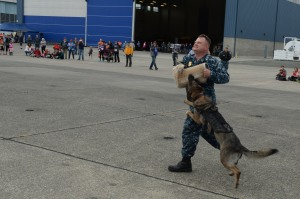 140719-N-DC740-060 OAK HARBOR, Wash. (July 19, 2014) Master-at-Arms 1st Class Kenneth Spade, from Harker Heights, Texas, and Fien, a military working dog, perform a demonstration for guests during Naval Air Station Whidbey Island's (NASWI) open house. The open house provides the general public an opportunity to interact with Sailors and learn more about NASWI's role both in the community and the Navy. (U.S. Navy photo by Mass Communication Specialist 2nd Class John Hetherington)