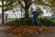 OAK HARBOR, Wash. (Oct. 29, 2015) - Operations Specialist 1st Class Ronald Tjaarda, assigned to Patrol and Reconnaissance Wing 10 (CPRW-10), from Bakersfield, California, rakes leaves during a First Class Petty Officer Association (FCPOA) community relations (COMREL) event at Windjammer Park. The FCPOA volunteers monthly around Whidbey Island as part of their COMREL program. (U.S. Navy photo by Mass Communication Specialist 3rd Class Caleb Cooper/Released)