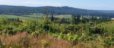 cropped Chimacum Ridge REPI parcel photo 2