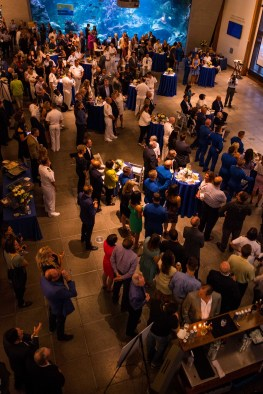 180802-N-SH284-1114 SEATTLE (August 2, 2018) Military Leaders, the Blue Angels, Boeing, Seafair Representatives and other VIP guests socialize at the Seattle Seafair Air Show Reception held at the Seattle Aquarium during the 69th annual Seafair Fleet Week. Seafair Fleet Week is an annual celebration of the sea services wherein Sailors, Marines and Coast Guard members from visiting U.S. Navy and Coast Guard ships and ships from Canada make the city a port of call. (U.S. Navy photo by Mass Communication Specialist 2nd Class Vaughan Dill/Released)
